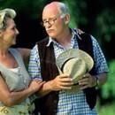 Emekliliğin Psiko-Sosyal Boyutu (12)